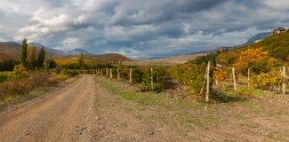 与土路的山风景在阿卢什塔市秋季的,克里米亚半岛半岛附近的葡萄园之间 库存照片