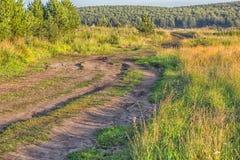 与土路领域和森林的风景 免版税库存图片