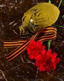 与圣乔治丝带和一个军用烧瓶的两支康乃馨,以纪念碑为背景 免版税图库摄影
