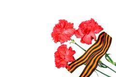 与圣乔治在白色背景隔绝的` s丝带的红色康乃馨 5月9日天胜利在巨大爱国战争中1941-194 库存图片