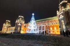 与圣诞树人的Tsaritsyno去观光 免版税图库摄影