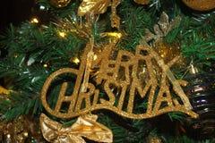 与圣诞树分支的圣诞快乐装饰 免版税库存照片