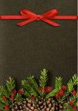 与圣诞树枝杈、锥体、莓果和r的黑背景 免版税库存图片