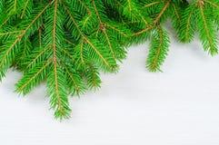 与圣诞树枝杈的抽象背景 免版税库存照片