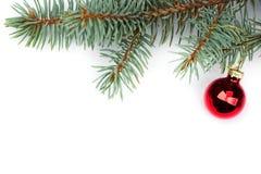 与圣诞树球的被隔绝的冷杉分支 免版税图库摄影