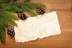 与圣诞树的老纸板料分支和锥体 免版税库存照片