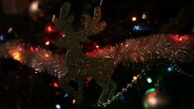 与圣诞灯的驯鹿 影视素材
