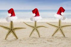 与圣诞老人帽子的三个海星在海滩 图库摄影