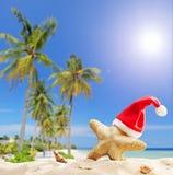 与圣诞老人帽子的海星由海洋 免版税库存图片