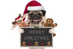 与圣诞老人帽子的逗人喜爱的圣诞节哈巴狗狗和棒棒糖、玩具和曲奇饼,阻止黑板 免版税库存照片