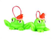 与圣诞老人帽子的青蛙 库存图片