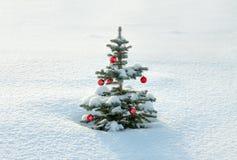 与圣诞节和新年杉树装饰的冬天风景 免版税图库摄影