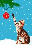 与圣诞节地球的猫 免版税库存图片