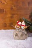 与圣诞节愿望的两只鸟 库存图片