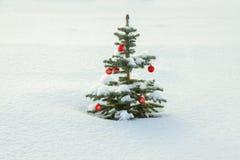 与圣诞节杉树装饰红色球的冬天风景和 库存照片