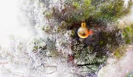 与圣诞节球的结霜的杉木 库存照片