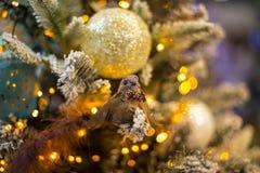 与圣诞节装饰的抽象未聚焦的背景 免版税图库摄影