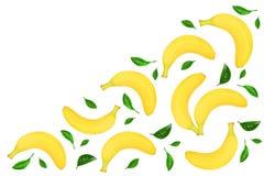 与在与拷贝空间的白色背景隔绝的叶子的整个香蕉您的文本的 顶视图 免版税库存照片