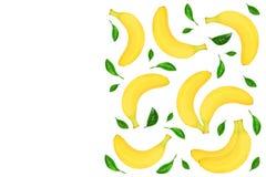 与在与拷贝空间的白色背景隔绝的叶子的整个香蕉您的文本的 顶视图 免版税库存图片