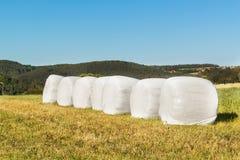 与在塑料胶膜包裹的干草捆的农村场面 在塑料的干草捆 在一个农业农场的夏天工作 免版税库存图片