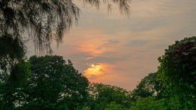 与在多云天空绘的发光的橙色光的吻合风景日落成为对在绿色叶子树上的暮色黎明 库存图片
