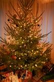 与在底下美丽的装饰、彩色小灯和礼物的圣诞树 免版税库存照片
