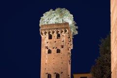 与在晚上-被拍摄的树的中世纪塔 库存照片