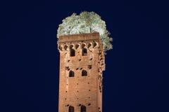 与在晚上-被拍摄的树的中世纪塔 免版税图库摄影