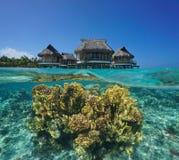 与在水面下珊瑚太平洋的平房overwater 库存图片