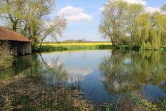 与在池塘的水中被反射的白色云彩的蓝天 库存照片