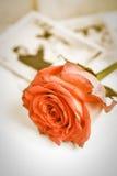 红色玫瑰和老婚礼照片 库存照片