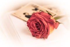 红色玫瑰和老婚礼照片 免版税图库摄影