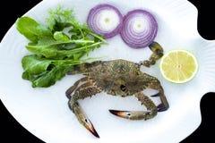 与在白色板材服务的火箭叶子的新鲜的螃蟹 库存照片