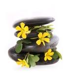 与在白色查出的黄色花的温泉石头 免版税库存照片