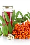 与在白色汁液隔绝的瓶子的橙色花楸浆果 免版税库存照片
