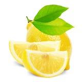 与在白色背景和切片的柠檬隔绝的叶子 免版税库存照片