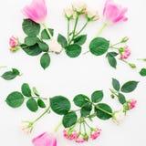 与在白色背景和瓣的花卉框架隔绝的郁金香花、玫瑰 平的位置,顶视图 背景能明信片使用的华伦泰 库存照片