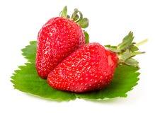 与在白色背景隔绝的叶子的两个草莓 免版税库存照片
