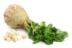 与在白色背景隔绝的叶子的芹菜根 芹菜查出的白色 健康的食物 库存图片