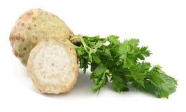 与在白色背景隔绝的叶子的芹菜根 芹菜查出的白色 健康的食物 免版税库存图片