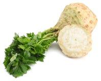 与在白色背景隔绝的叶子的芹菜根 芹菜查出的白色 健康的食物 免版税图库摄影
