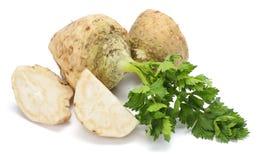 与在白色背景隔绝的叶子的芹菜根 芹菜查出的白色 健康的食物 免版税库存照片