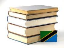 与在白色背景隔绝的堆的坦桑尼亚的旗子书 皇族释放例证