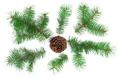 与在白色背景隔绝的锥体的杉树分支 抽象空白背景圣诞节黑暗的装饰设计模式红色的星形 顶视图 免版税图库摄影