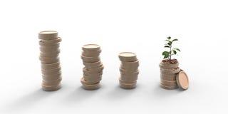 与在白色背景隔绝的储蓄的金钱硬币生长植物步 库存照片