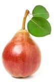 与在白色背景隔绝的叶子的一个红黄色梨 免版税库存图片