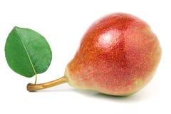 与在白色背景隔绝的叶子的一个红黄色梨 库存图片