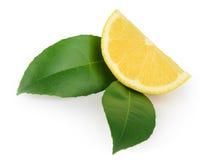 与在白色背景隔绝的叶子的柠檬切片 库存图片