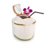 与在白色背景隔绝的吸管的绿色椰子 库存图片