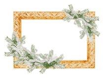 与在白色背景隔绝的多雪的云杉的树枝的照片框架 免版税库存照片